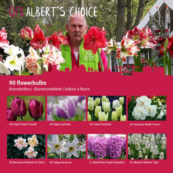 ALBERT's Flower Bulb Collection