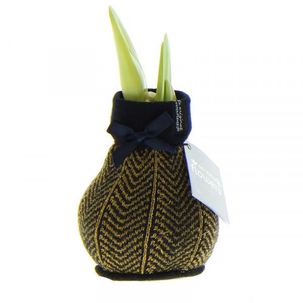 Wax Amaryllis Fashionz Elegant Goud